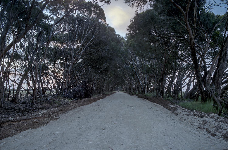 road, American River