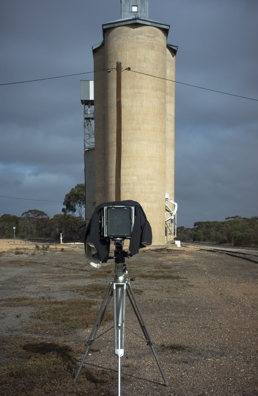 silo, Galah, Mallee, Victoria