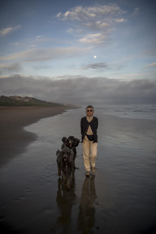 Gawler Beach, Fleurieu Peninsula
