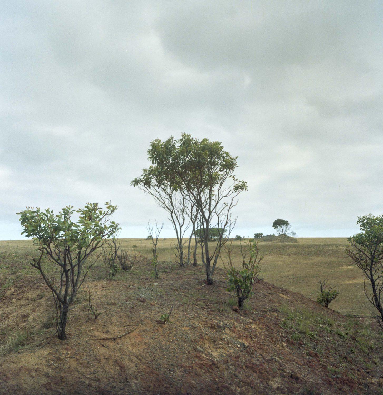 Edgeland, Waitpinga